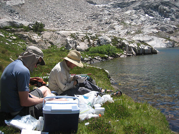 UC Berkeley researchers Vance Vredenburg and Tate Tunstall collect data on infected frogs at Kings Canyon National Park. (Photo by Vance T. Vredenburg, UC Berkeley)